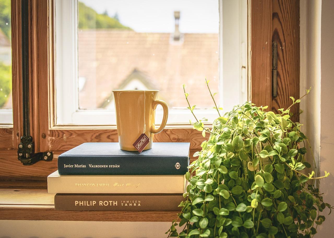 観葉植物が枯れる夢の意味は?スピリチュアル的な解釈と改善方法!