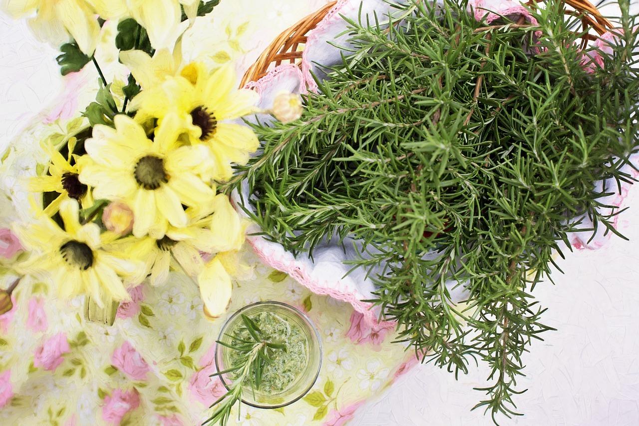 ローズマリーのアロマや香りの効果は?肌に対してや、料理に使う時の効果も!