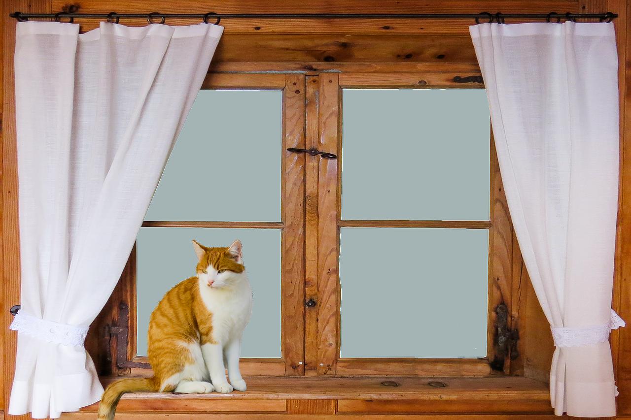 窓の目隠しシートおすすめ!おしゃれで剥がせるシートは100均にある?貼り方もご紹介!